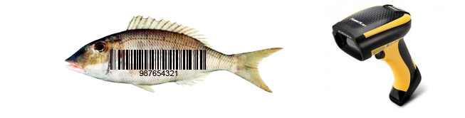 barcode scanner and fish